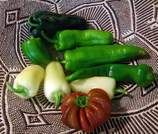 Basket of Red, Green, Dark Green, and Yellow Peppers