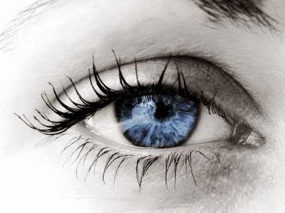 bbb d 39 o proviennent les yeux bleus. Black Bedroom Furniture Sets. Home Design Ideas