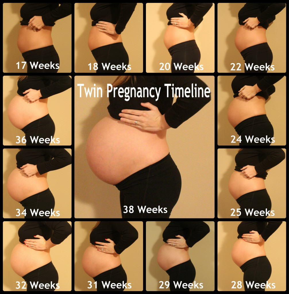 Guest post how to make a diy month by month pregnancy poster