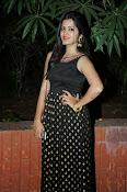 Pavani glamorous photos gallery-thumbnail-2