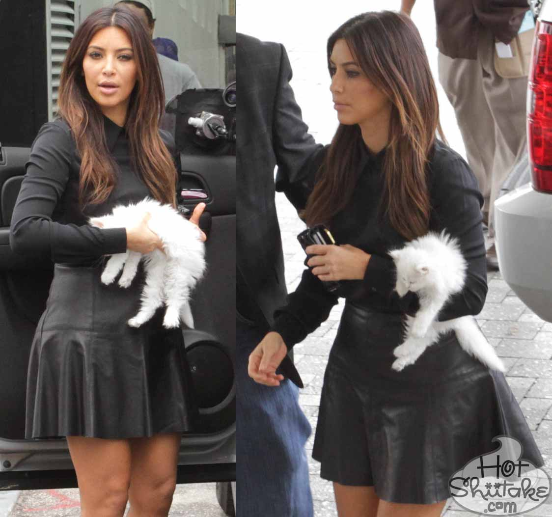 Kim Kardashian Cat Mercy