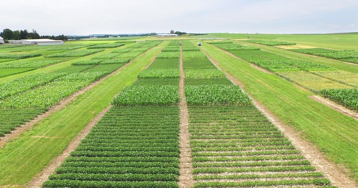 Define agronomy study