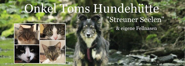 Onkel Toms Hundehütte