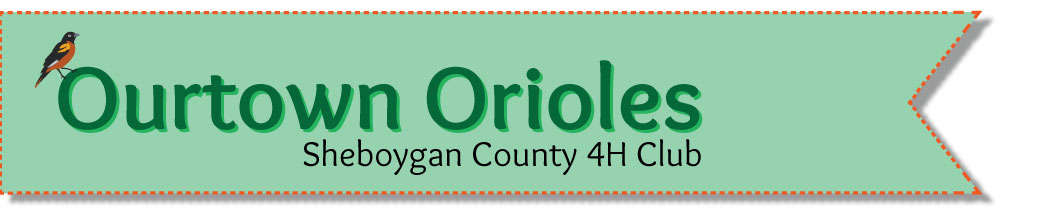 Ourtown Orioles 4H