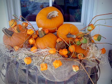 Home with the sandbar bungalow fall window boxes - Window decorations for fall ...