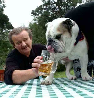 Dog drinks beer