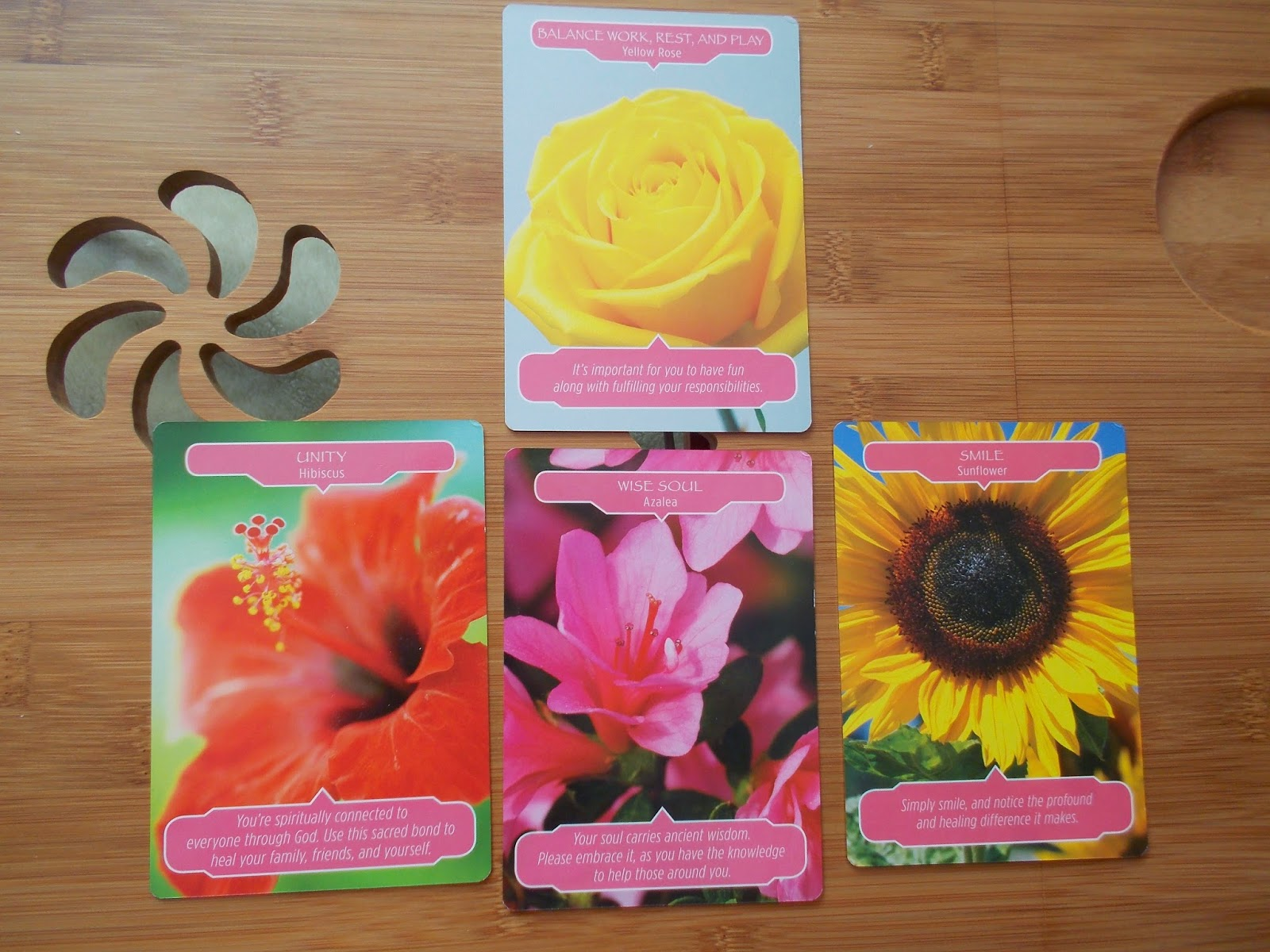 Diary Of An Ascension Pioneer My Flower Companions The World Of Color