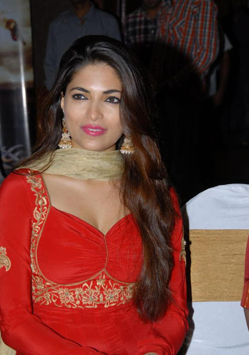 parvathy omanakuttan spicy n in red salwar at david billa audio launch unseen pics
