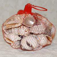 Bag Of Seashells2