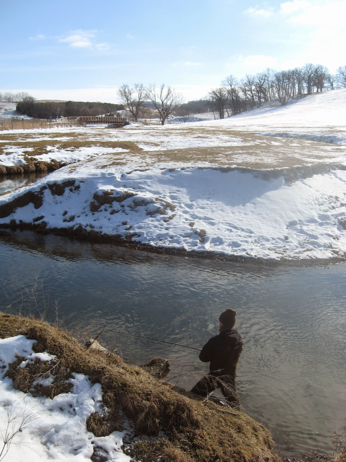 Minnesota driftless fly fishing trip report eagles for Minnesota fishing trips