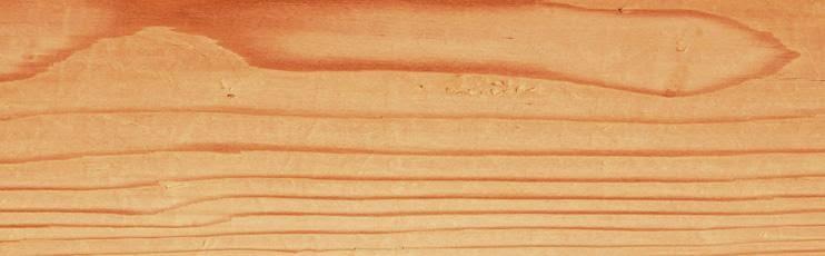 Velero propio maderas para el mar - Maderas el pino ...