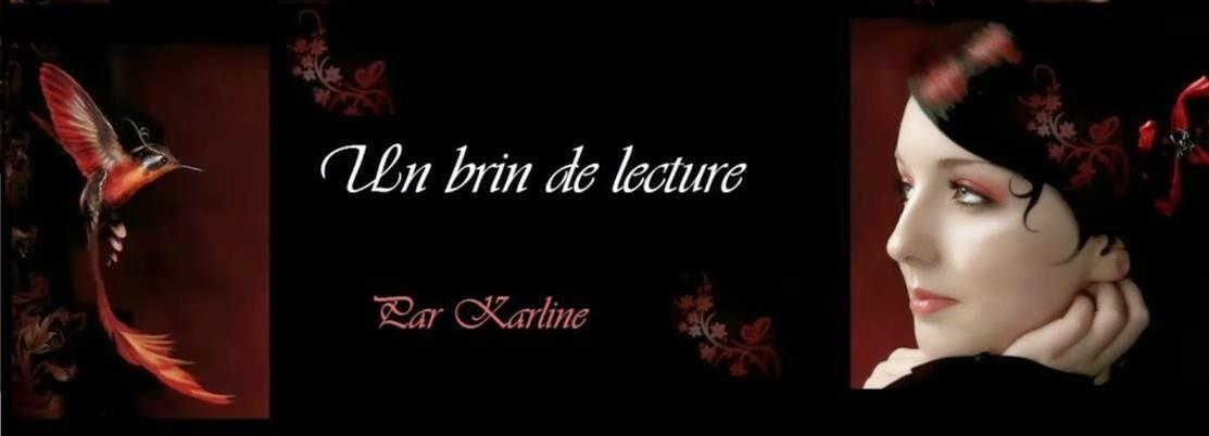 http://www.unbrindelecture.com/2014/09/je-tinterdis-de-maimer-de-marine.html