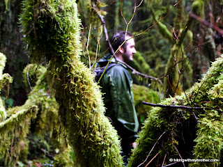federation forest state park hikingwithmybrother