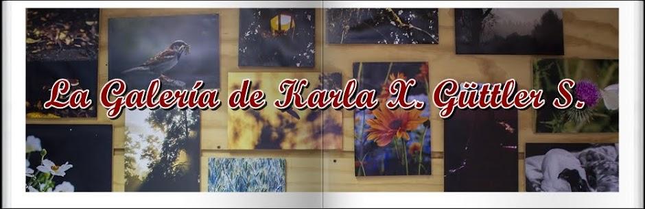 La Galería de Karla X. Güttler S.
