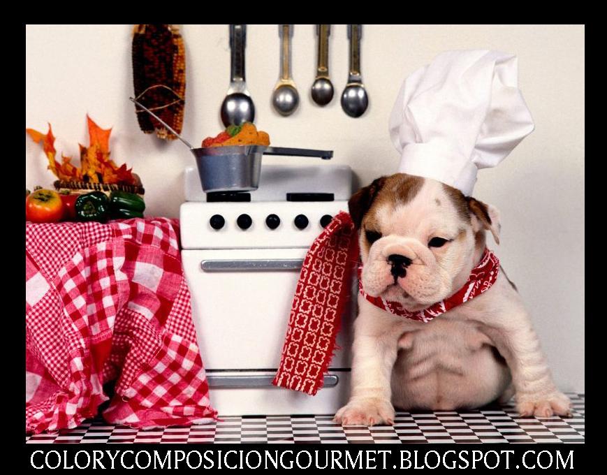 Gastronomia culinaria gourmet el feeling de la gastronomia for Cocina molecular definicion