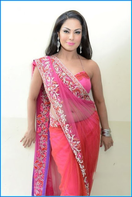 Veena Malik Photos in Transparent Saree