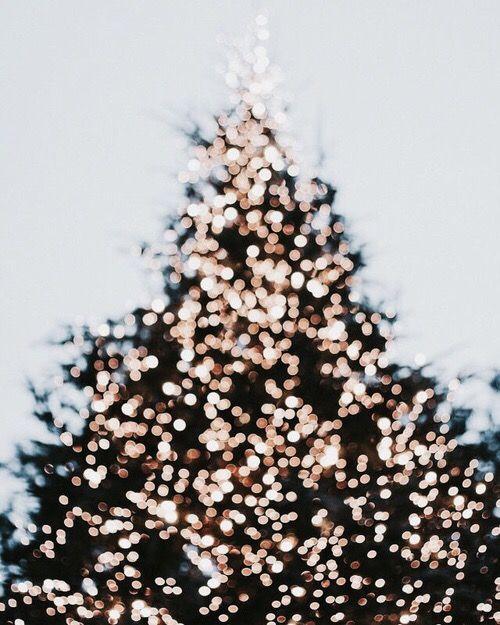 .... christmas time!!!