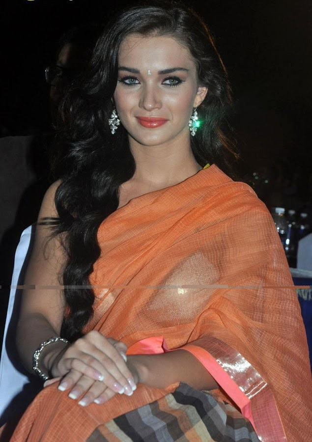Amy Jackson in Transparent Saree Exposed Her Bra