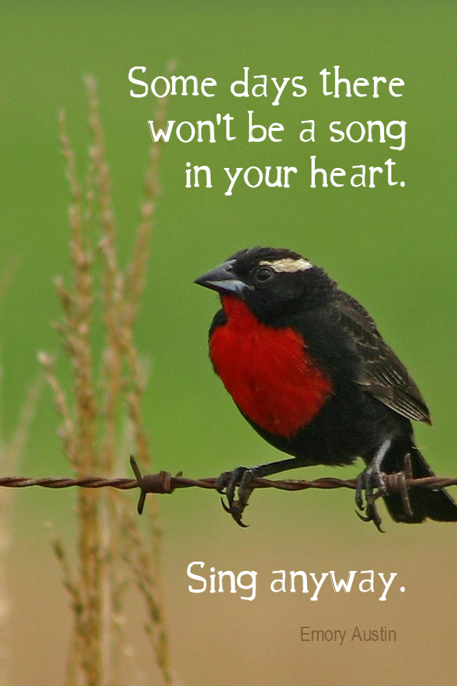 visual quote - image quotation for HAPPINESS - Some days there won't be a song in your heart. Sing anyway. - Emory Austin