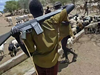 Herdsmen killings a planned genocide – Benue elders