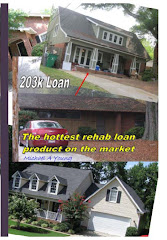 Borrowers Guide To The 203k Loan by Mike Young