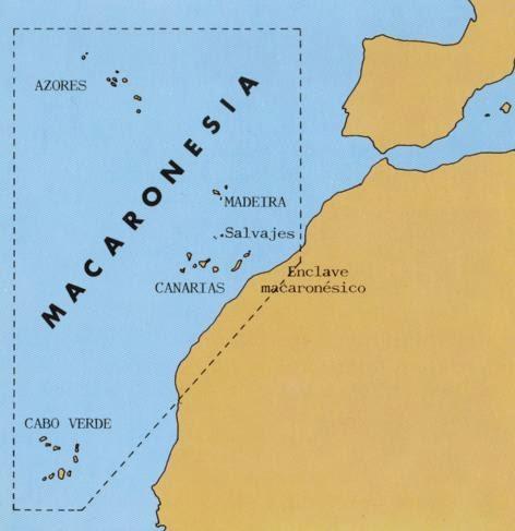 Cruceros, Mar y Barcos: Macaronesia, ruta de cruceros
