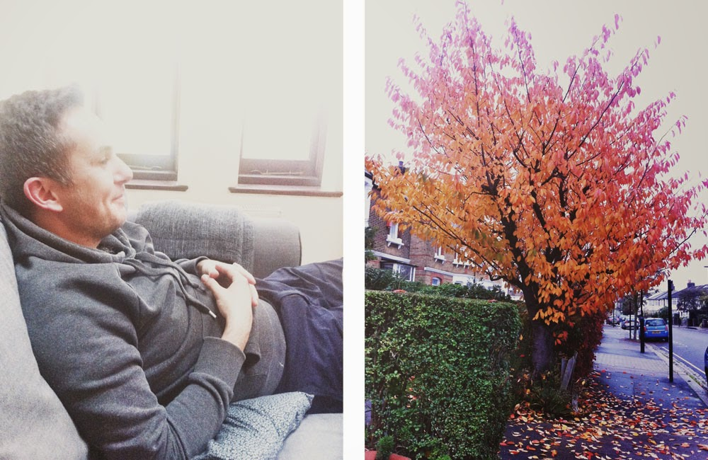 Andy // Autumn in Lee Green