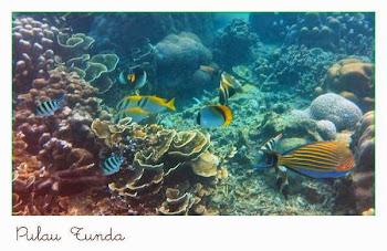 Tourism Corner * Tunda Island, Serang Banten Indonesia
