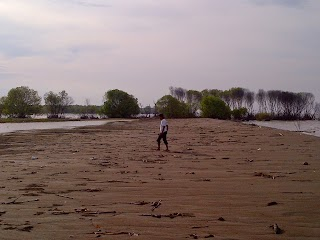 Pantai Beting, Kritisnya Hutan Payau Muaragembong