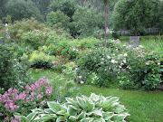 sommar i min trädgård