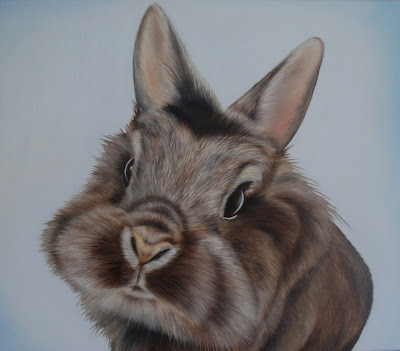 Pet Portrait rabbit oil on canvas