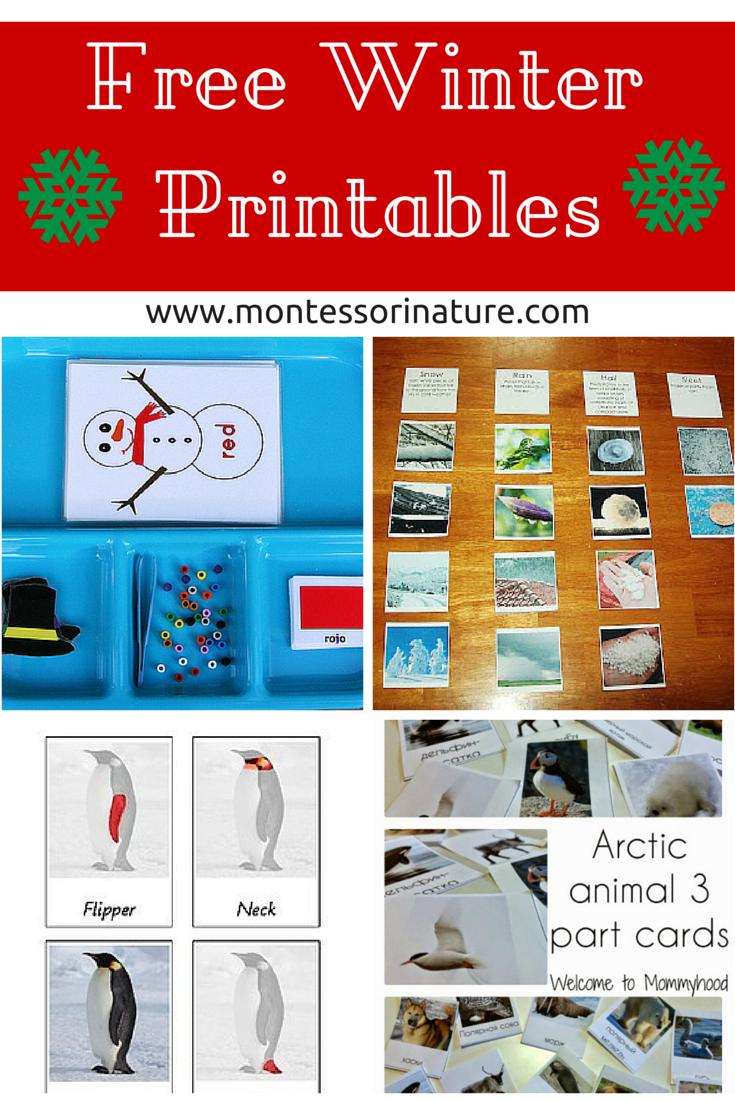 Free Winter Printables for Kids - Montessori Nature