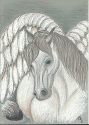 Voiko hevonen olla enkeli?