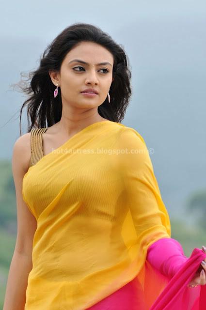 bollywood, tollywood, hot, Nikitha, Narayan, Cute, Saree, Photos