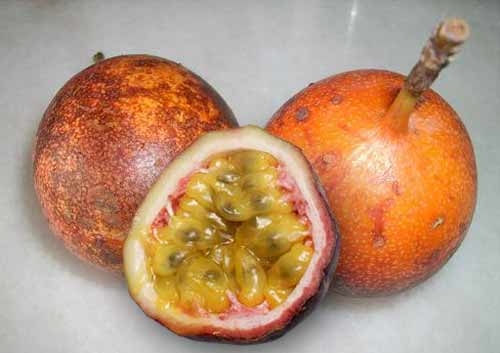 Passionfruit : Cure Many Kinds of Diseases | Health ...