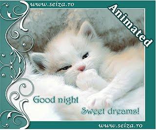 Pisicuta somnoroasa - felicitare animata