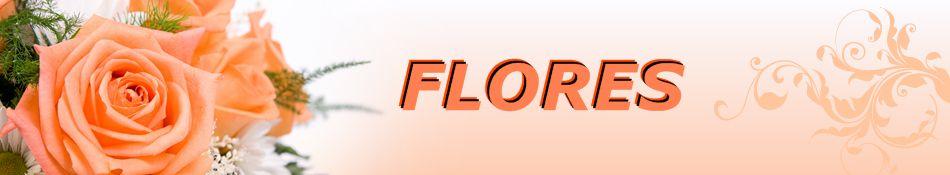 Flores, cultivo e significado das flores