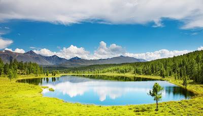 Lago junto al bosque con hermosas montañas