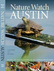 Nature Watch Austin