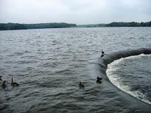 Conneaut Lake Park Update July 20th 2014 Coaster Talk