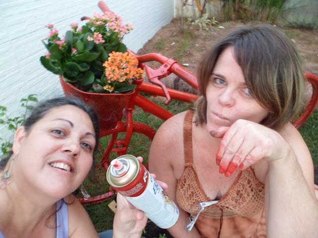 reciclagem - bicicleta porta-vasos - RoAguiar e Lucia Klein