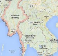 Harga harga ayam bangkok di Thailand jenis ayam birma