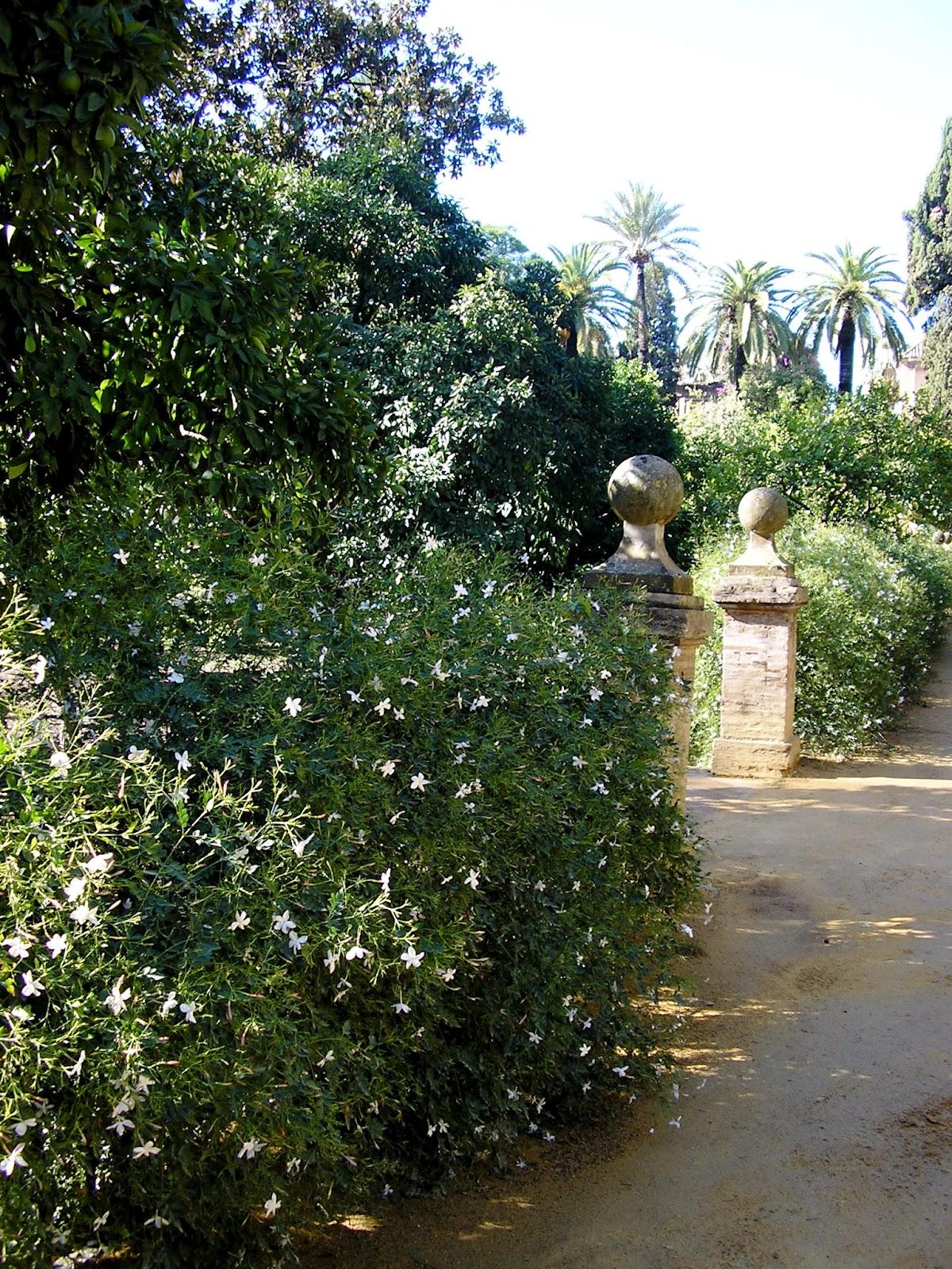 Marta tra i fiori settembre 2012 - Arte e giardino ...