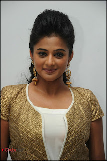 Priyamani Latest Pictures in Salwar Kameez at Chandi Movie Trailer Launch 0006