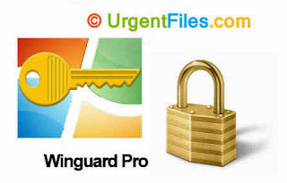 WinGuard Pro Free Download