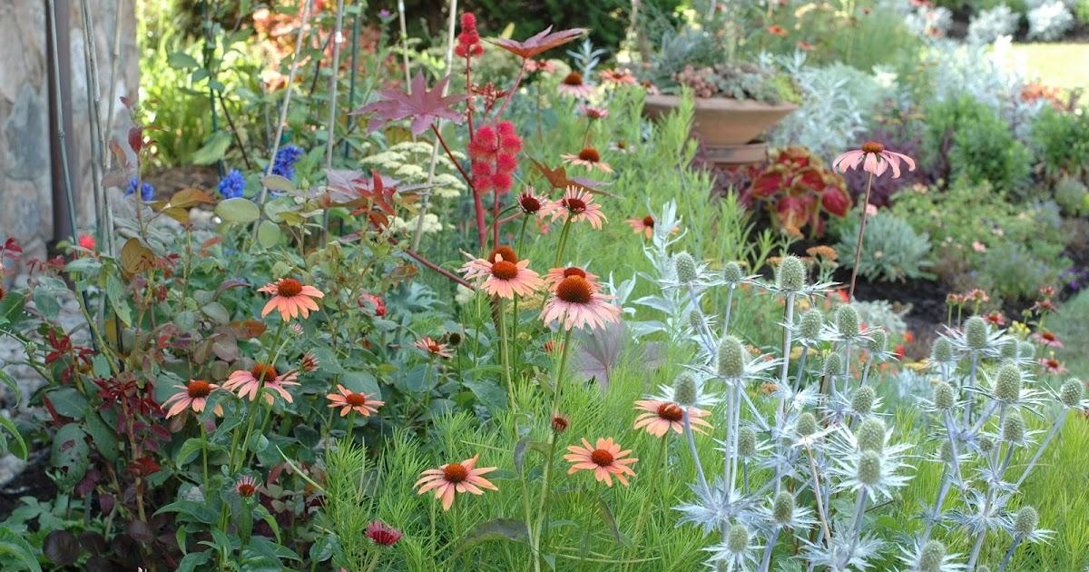 Annie 39 s gardening corner what makes a garden smart for Perennial border design plans