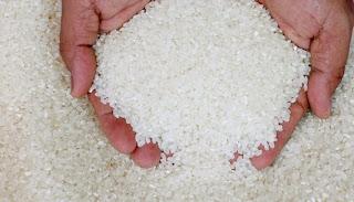 beras sintetis bukan plastik, beras sintetis buatan indonesia, beras sintetis bagi kesehatan