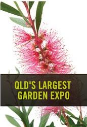 Queensland 2013