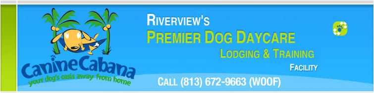 Canine Cabana Riverview FL