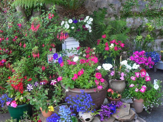de Idéias  Tudo em Paisagismo e Decoração Jardins Pequenos